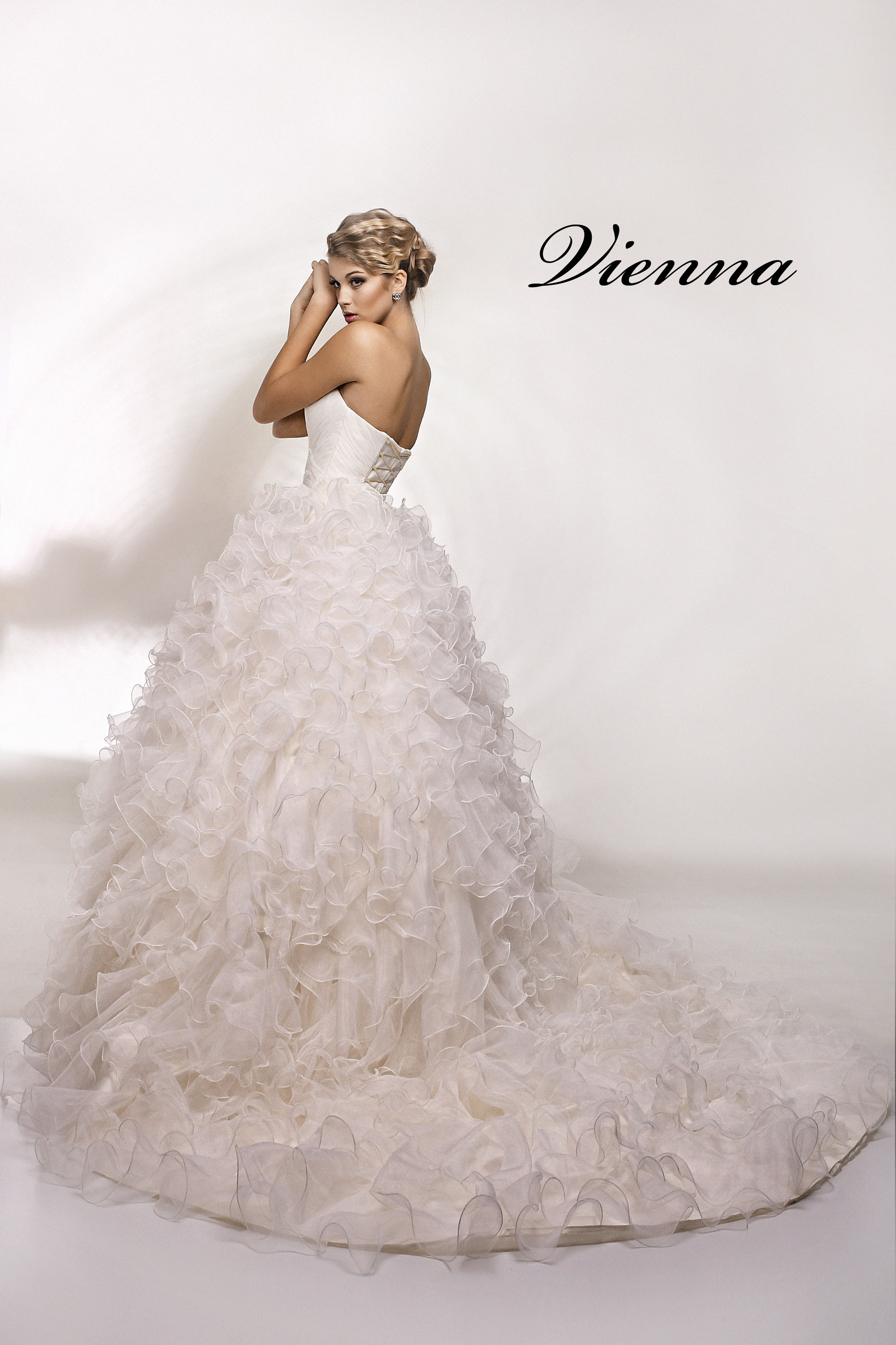 Wedding Dress Vienna  3