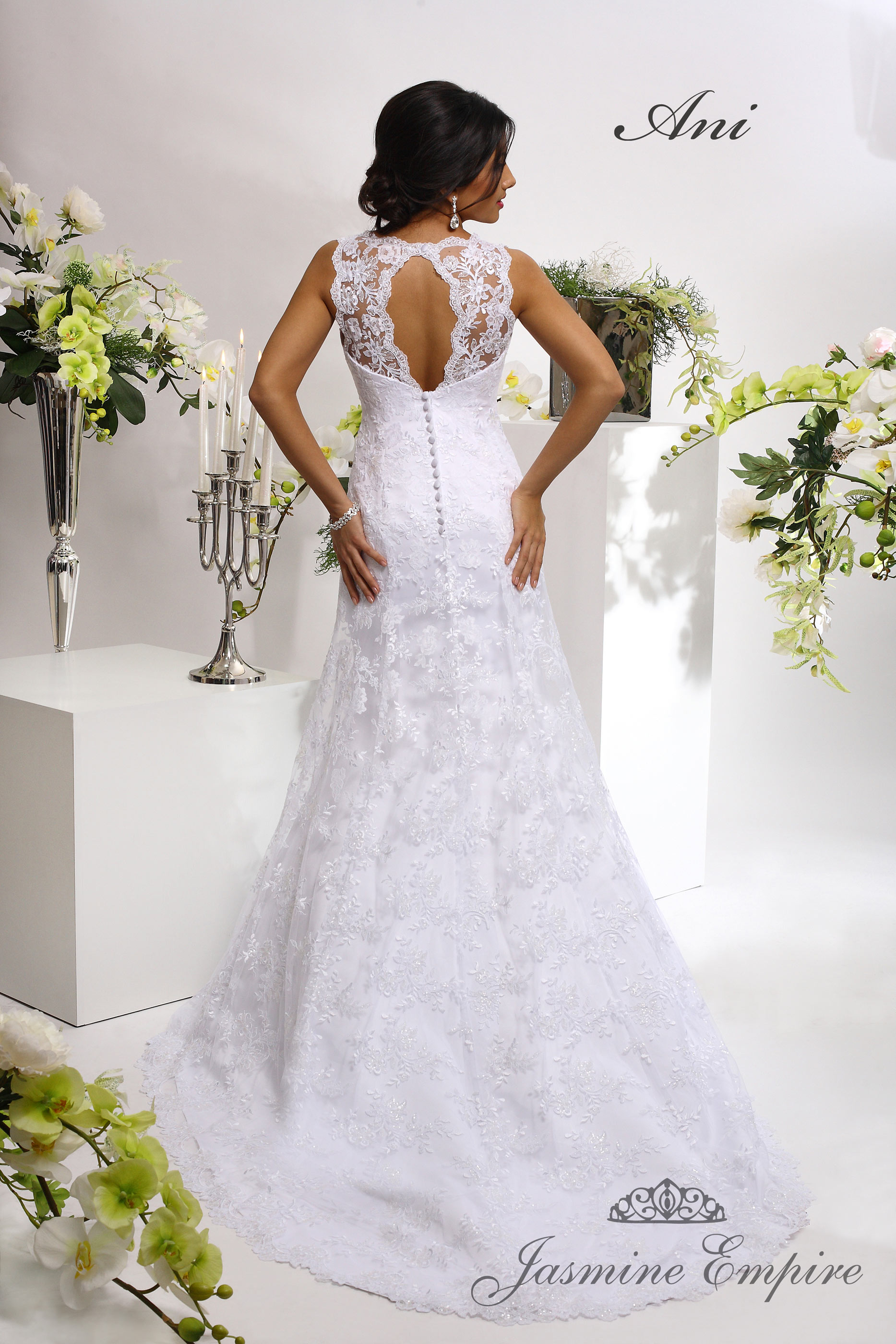 Wedding Dress Ani  2